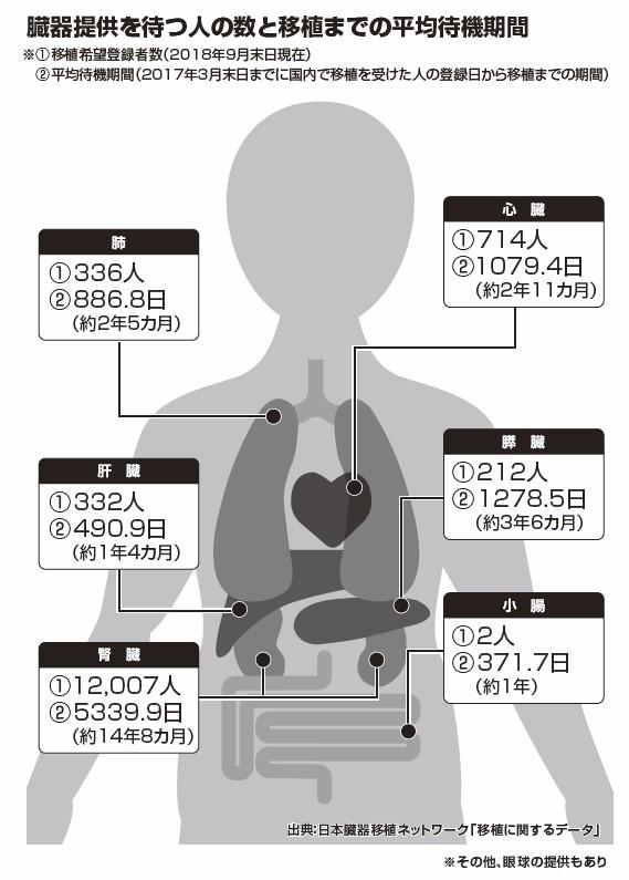 【10月は「臓器移植普及推進月間」】臓器提供○でも×でもまずは意思表示を